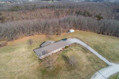 Hartsburg Single Family Home For Sale: 3515 E Hidden Lane