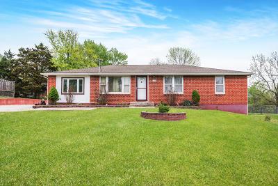 Jefferson City Single Family Home For Sale: 119 Boeckman Drive