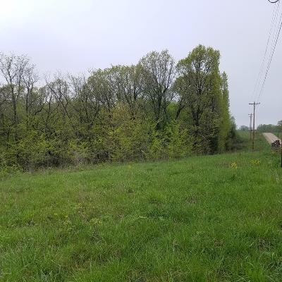 Residential Lots & Land For Sale: County Road 468