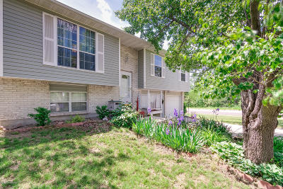 Columbia Single Family Home For Sale: 916 Wingham Drive