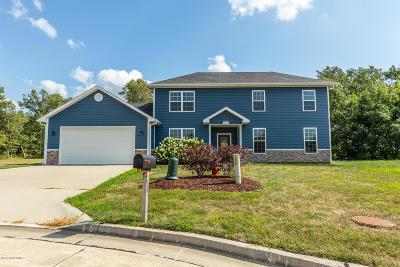 Ashland Single Family Home For Sale: 550 Sue Drive