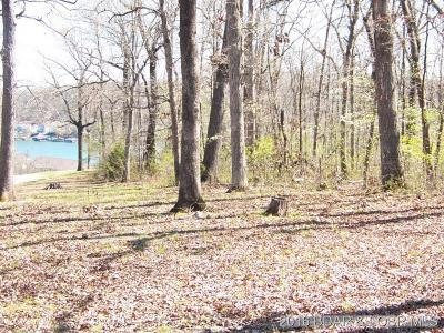Camdenton Residential Lots & Land For Sale: Ee