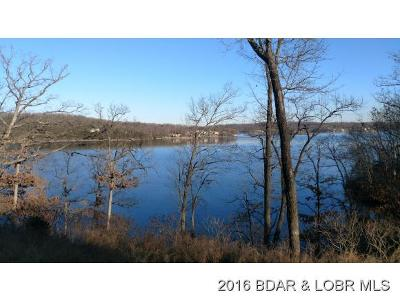 Camdenton MO Residential Lots & Land For Sale: $125,000
