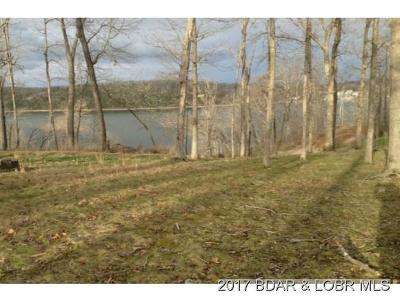 Camdenton MO Residential Lots & Land For Sale: $65,000