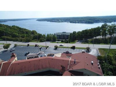 Lake Ozark Commercial For Sale: 2545 Bagnell Dam Blvd