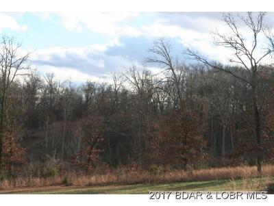 Residential Lots & Land For Sale: Lot 1 Lakeridge Country Estates