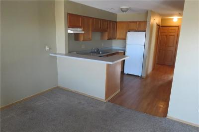 Osage Beach Condo For Sale: 1091 Red Bud Road #38
