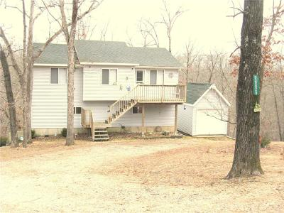 Rocky Mount Single Family Home For Sale: 29825 Button Wood Lane
