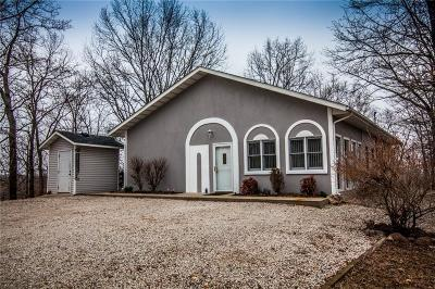 Camdenton Single Family Home For Sale: 1399 Bear Paw