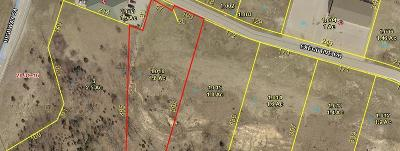 Benton County, Camden County, Cole County, Dallas County, Hickory County, Laclede County, Miller County, Moniteau County, Morgan County, Pulaski County Residential Lots & Land For Sale: 904 Lot #4 Executive Drive
