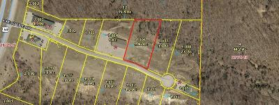 Benton County, Camden County, Cole County, Dallas County, Hickory County, Laclede County, Miller County, Moniteau County, Morgan County, Pulaski County Residential Lots & Land For Sale: 904 Lot #11a Executive Drive