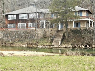 Camdenton Single Family Home For Sale: 254 Bank Branch Drive