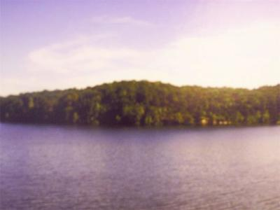 Residential Lots & Land For Sale: Tract B&c Jumping Bass Cove