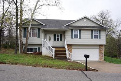 Osage Beach Single Family Home For Sale: 6452 Red Barn Road