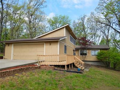 Lake Ozark Single Family Home For Sale: 201 Linn Creek Road