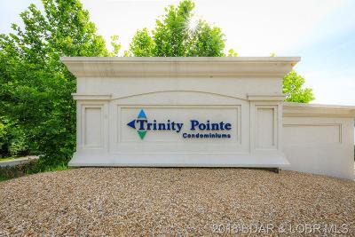 Camdenton Commercial For Sale: 100 Trinity Pointe Drive