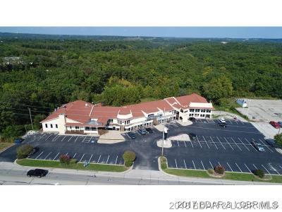 Lake Ozark Commercial For Sale: 2545 Bagnell Dam Boulevard
