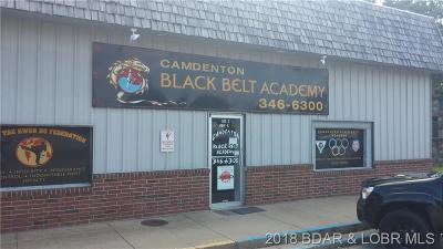 Camdenton Commercial For Sale: 163 Hwy 5 S #1,2 & 3