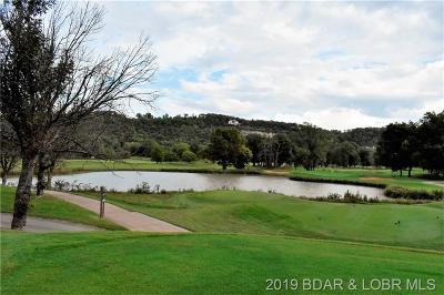 Lake Ozark Residential Lots & Land For Sale: 195 Eagle Rock Avenue