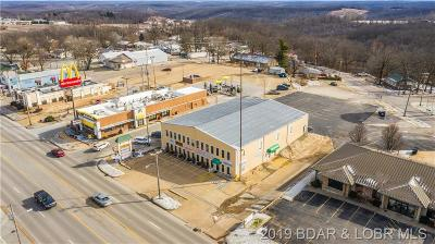 Camdenton Commercial For Sale: 246 E. Us Hwy 54