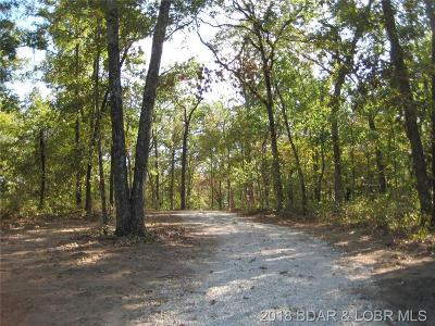 Benton County, Camden County, Cole County, Dallas County, Hickory County, Laclede County, Miller County, Moniteau County, Morgan County, Pulaski County Residential Lots & Land For Sale: 32+/- Acres Lake Placid Road