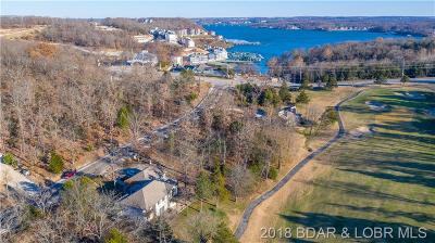 Lake Ozark Single Family Home For Sale: 90 Hogan Drive