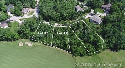 Residential Lots & Land For Sale: 43 Snead Circle