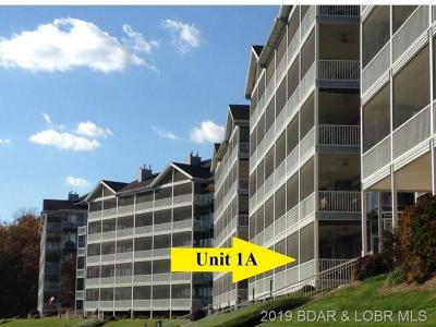 Camdenton Condo For Sale: 895 Summer Place Drive #1A