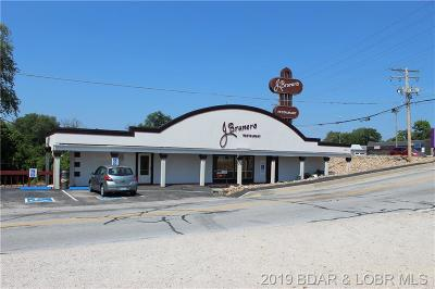 Osage Beach Commercial For Sale: 5166 Osage Beach Parkway