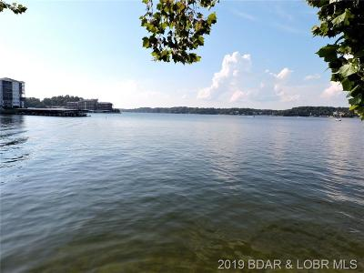 Lake Ozark Single Family Home For Sale: 343 Big Bear Drive
