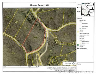 Residential Lots & Land For Sale: Tbd Bobcat Road