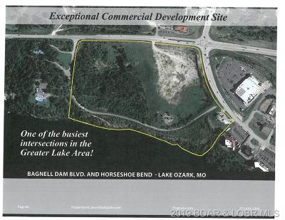 Commercial For Sale: Tbd Lakeside Village