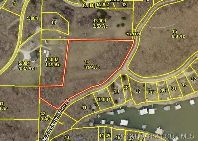 Residential Lots & Land For Sale: Tbd Morgan Hills Road