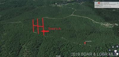 Rocky Mount Residential Lots & Land For Sale: Tract 2 Lot A Howard Road