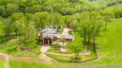 Camdenton Single Family Home For Sale: 1417 Silver Springs Drive