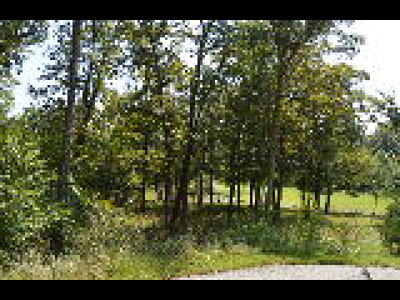 Residential Lots & Land For Sale: Lot 278 Oakmont Court