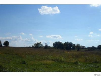 Jefferson County, Madison County, St Francois County Commercial For Sale: Hwy 67