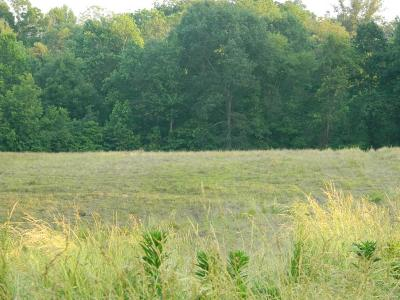 Scott County, Cape Girardeau County, Bollinger County, Perry County Farm For Sale: Co. Rd 512