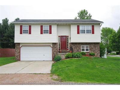 St Jacob Single Family Home For Sale: 10672 Keck Road
