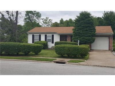 Alton Single Family Home For Sale: 2836 Circle Drive