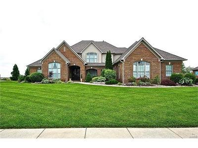 Caseyville Single Family Home For Sale: 936 Far Oaks Drive