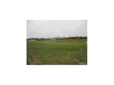 Residential Lots & Land For Sale: 8704 Saint Leos Road