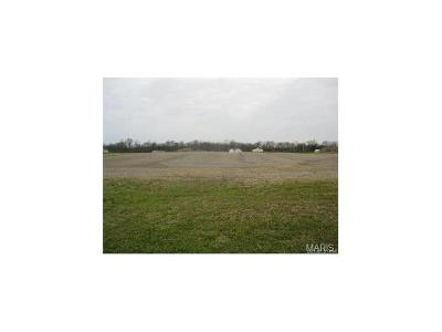 Residential Lots & Land For Sale: 8680 Saint Leos Road