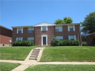 Bridgeton Multi Family Home For Sale: 3332 Brierhall Drive #1-4