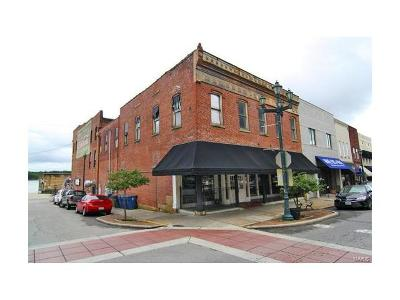 Scott County, Cape Girardeau County, Bollinger County, Perry County Commercial For Sale: 46 North Main Street