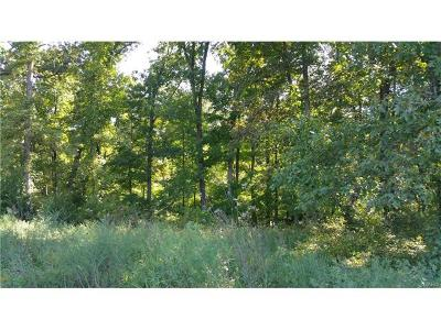 Scott County, Cape Girardeau County, Bollinger County, Perry County Farm For Sale: 1 Pcr 424