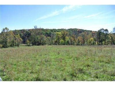 Scott County, Cape Girardeau County, Bollinger County, Perry County Farm For Sale: Pcr 738 - Tract 2