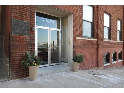 Alton Condo/Townhouse For Sale: 7 Alby #9