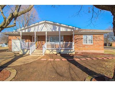 Desloge Single Family Home For Sale: 417 Locust Street