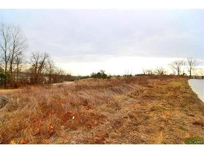 Scott County, Cape Girardeau County, Bollinger County, Perry County Commercial For Sale: 2 South Old Orchard Road